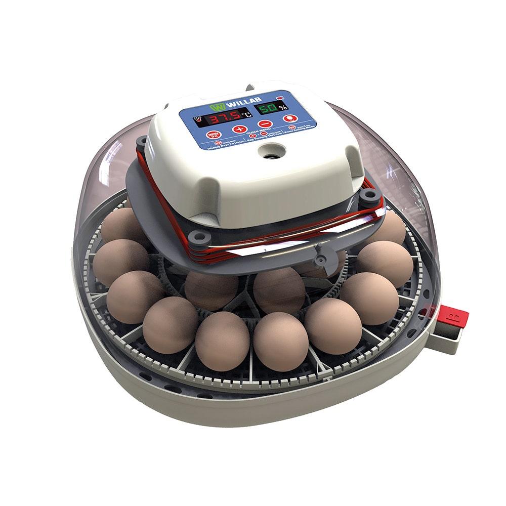 Äggkläckare Willab Med Inbyggd Ägglampa