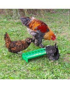 Fodertråg River Systems För kycklingar 50 cm
