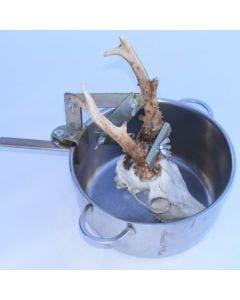 Hornhållare Lotin För kokning av rådjurstrofé