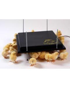 Värmetak för kycklingar 40 x 40 cm