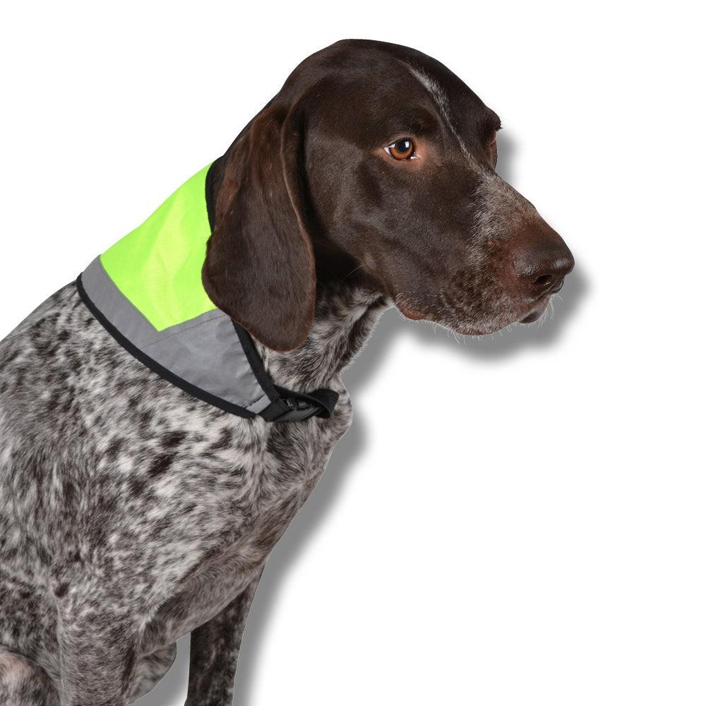 Reflexscarfs för hund M 40x18cm gul
